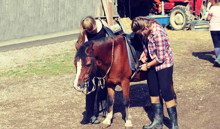Pony Days, Horse Riding, Rockely Equestrian Centre Banrsley