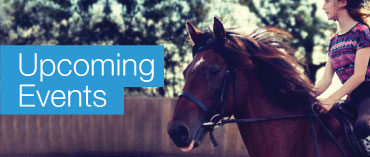 Rockley Equestrian Centre Barnsley Events